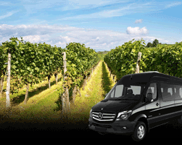 Global limos Wine And Private Tours Service