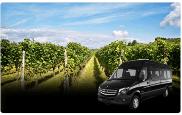 wine / private tours