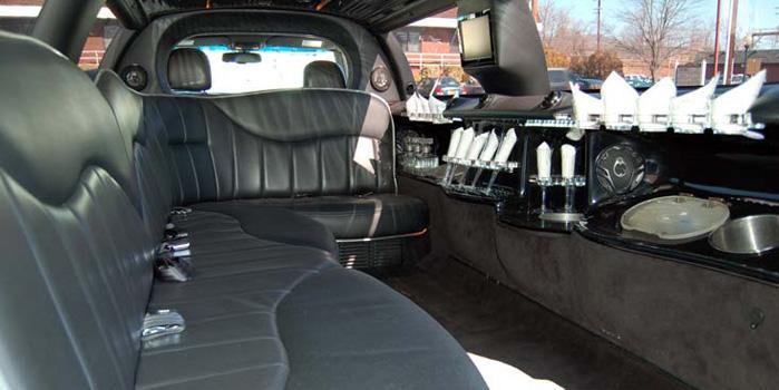 10 Passenger Limo Car Rental (Interior)