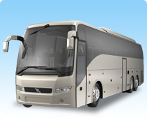 40-50 Passenger Party Bus Sevices
