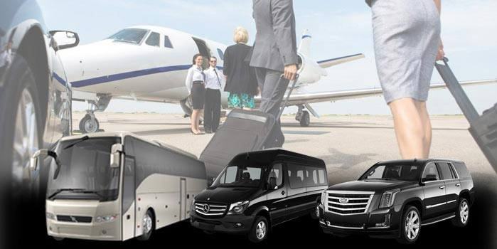 Airport And Ground Transport Shuttle Bus Service