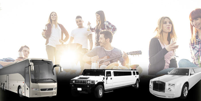 Tours And Group Outings Party Bus Service